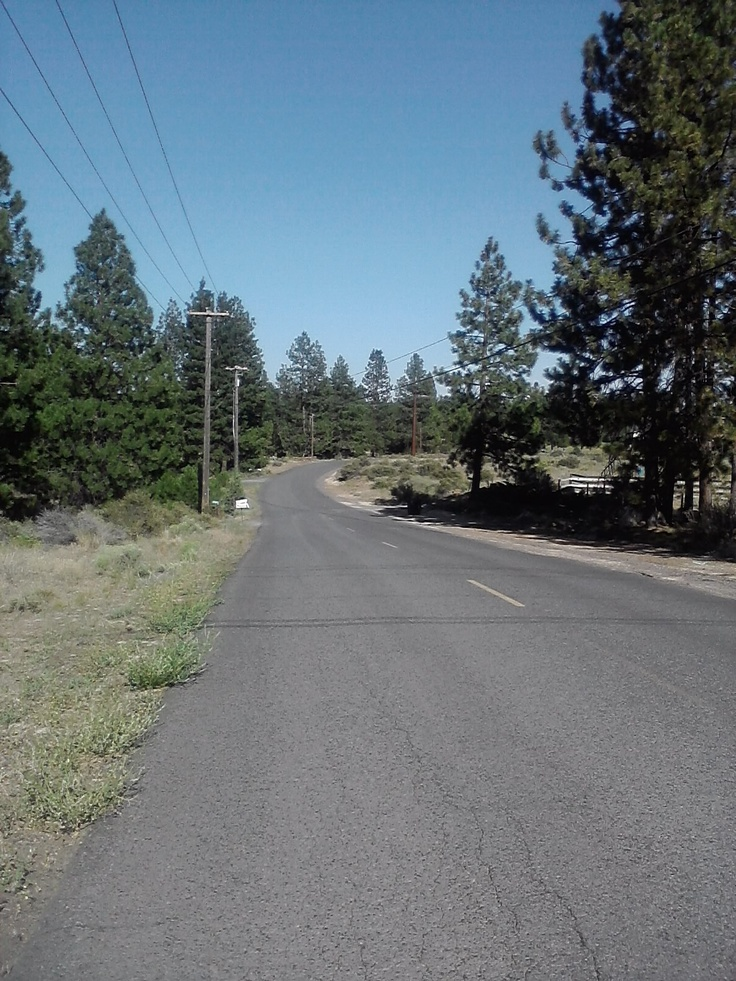 Rocking Horse Road along my bike route