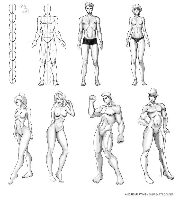 Anatomy Study ( Stylized ) - Estudo de Anatomia ( Estilizado )  Anatomy and…