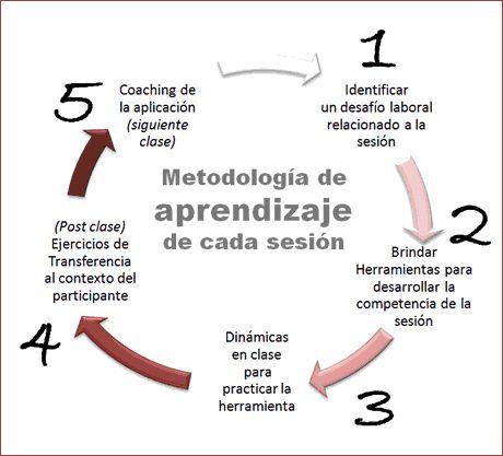 Grafico metodología Five