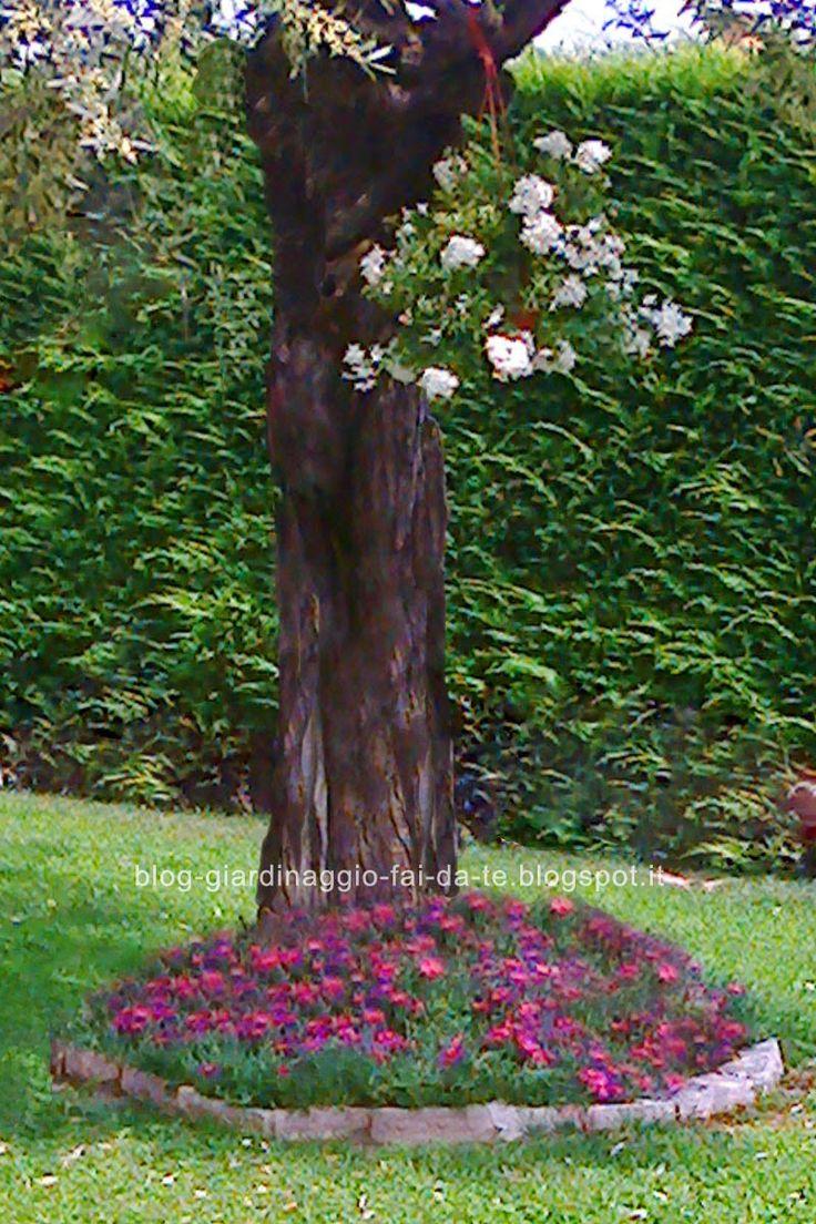 Il blog del giardinaggio fai da te consigli facili per - Giare da giardino ...