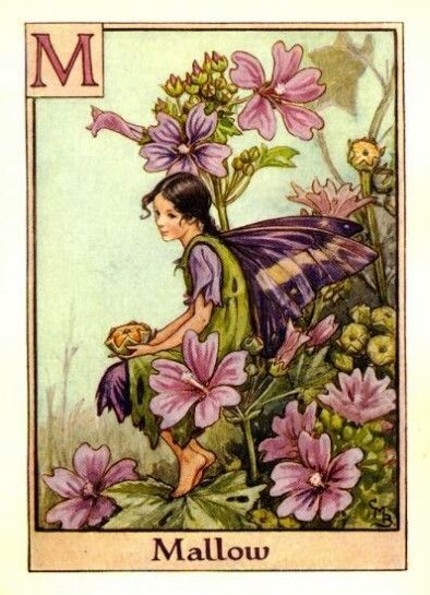 Cicely Mary Barker, Mallow