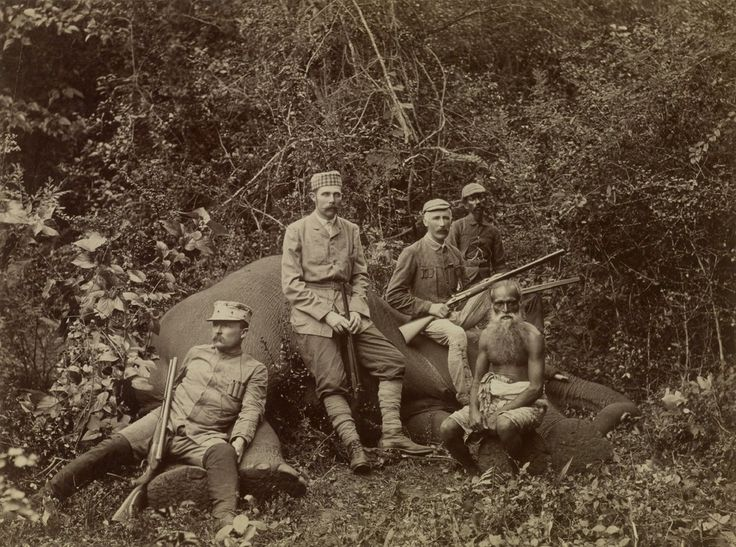 Elephant Hunting Expedition Of Archduke Franz Ferdinand Of -1039