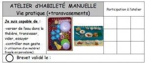 """brevet """"simple"""": marque son passage, valide la réussite ac tampon+coloriage rond vert"""