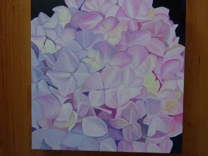 Pink hydrangea, original oil painting by Tracey Hall