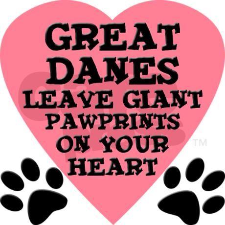 Great Dane <3