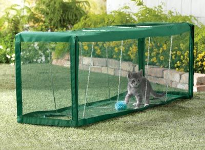 great idea for a cat that may only be an indoor cat, an outdoor cat tunnel.