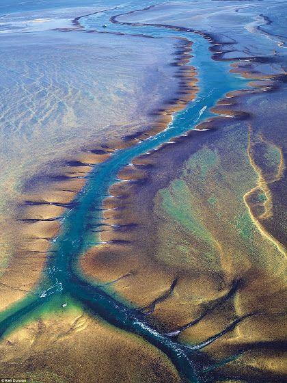 Montgomery Reef: Western Australia
