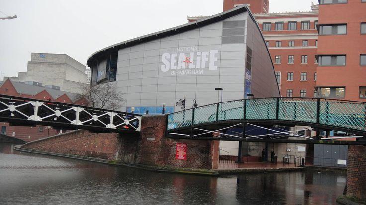 Birmingham Sea Life Centre - amazing place