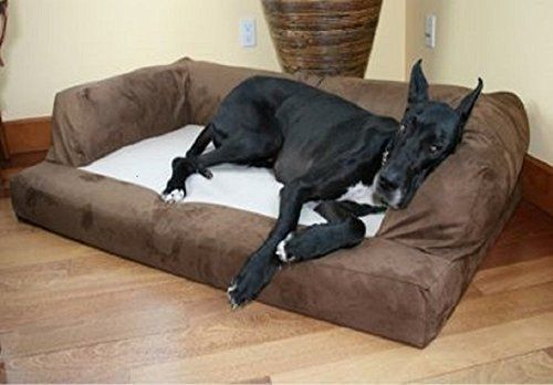 XXL Dog Bed Orthopedic Foam Sofa Couch Extra Large Size Great Dane - Chocolate by Hidden Valley - http://www.bunnybits.org/xxl-dog-bed-orthopedic-foam-sofa-couch-extra-large-size-great-dane-chocolate-by-hidden-valley/