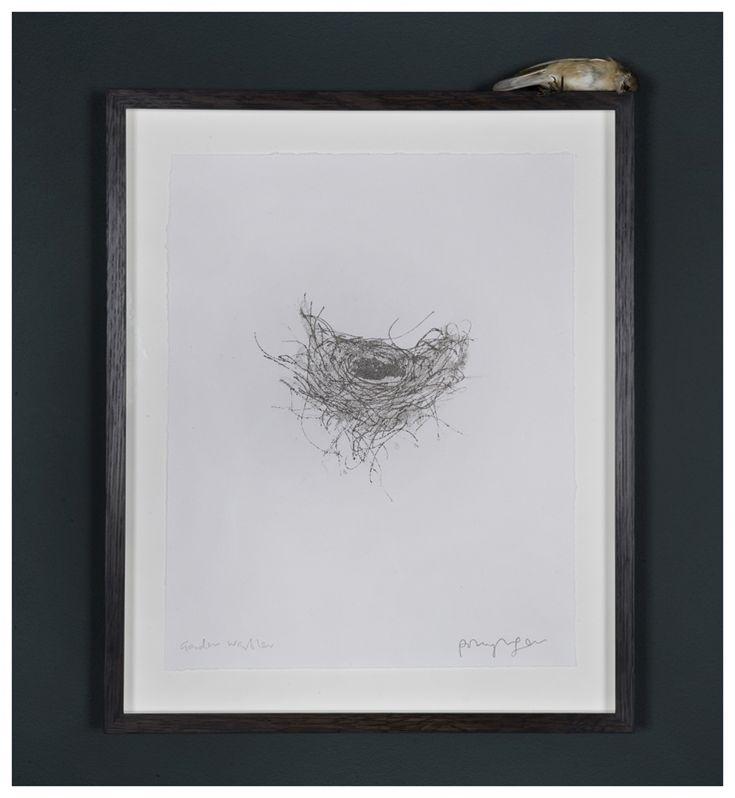 Garden Warbler – Polly Morgan