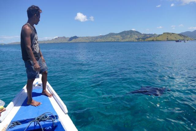 Komodo, Manta Point, hier springen wir zu den Mantas ins Meer