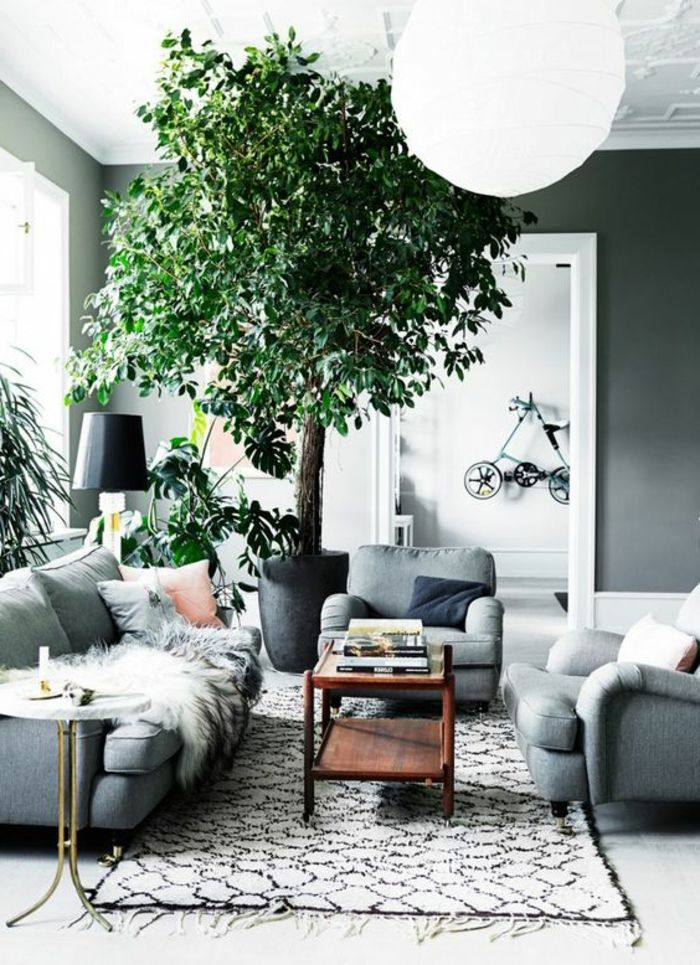 32 best pflanzen images on pinterest house plants for Zimmerpflanzen dekorieren