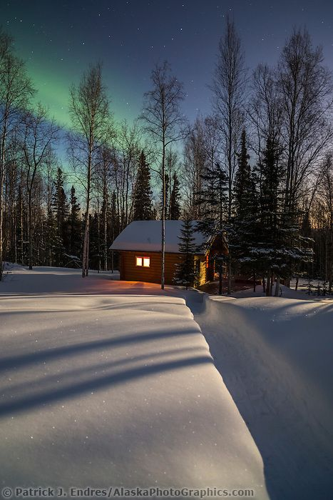 **Log cabin in a boreal forest in Fairbanks, Alaska with green northern lights overhead