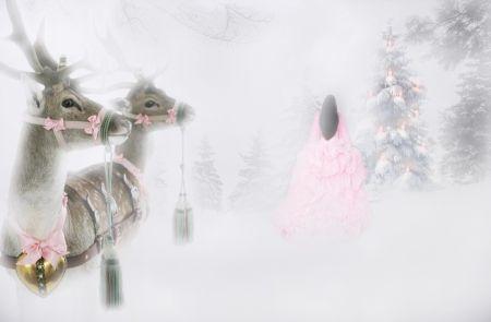 Νow is klaar ... - grenen, vakantie, kerstmis, meisje, tijd, sneeuw, boom, herten, jurk, roze, bos, sneeuw, de winter, brunette, twee