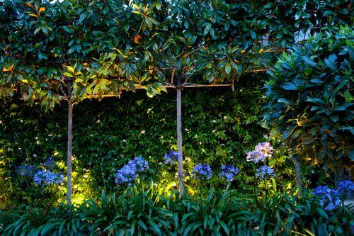 Subtle lighting brings the garden to life in the evenings. Contemporary family garden islington