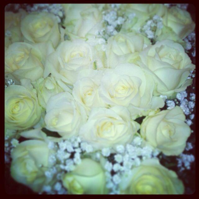 #cuore #rose #bianche #white