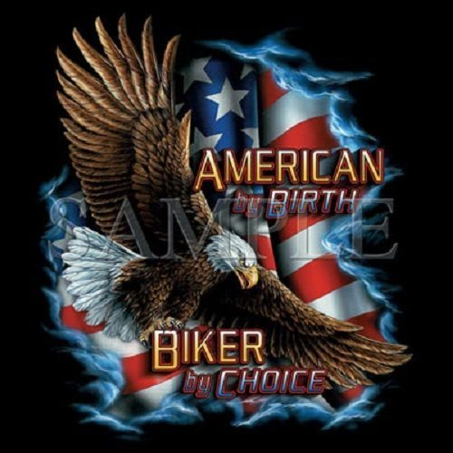 Biker Choice Motorcycle HEAT PRESS TRANSFER PRINT for T Shirt Sweatshirt  043 #AB