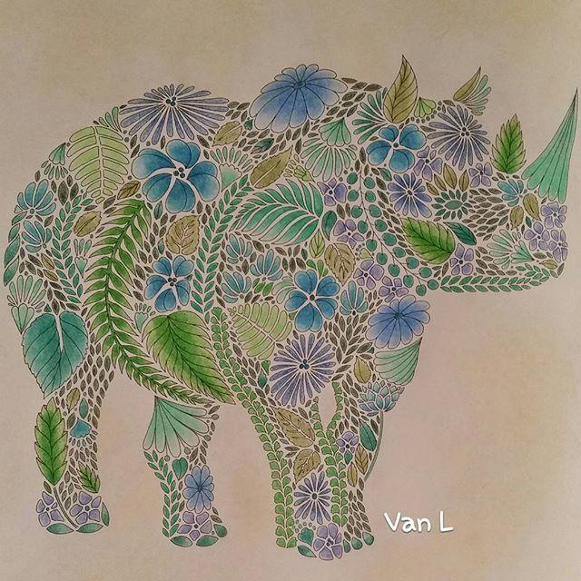 17 Best Images About Millie Marotta Rinoceronte On Pinterest