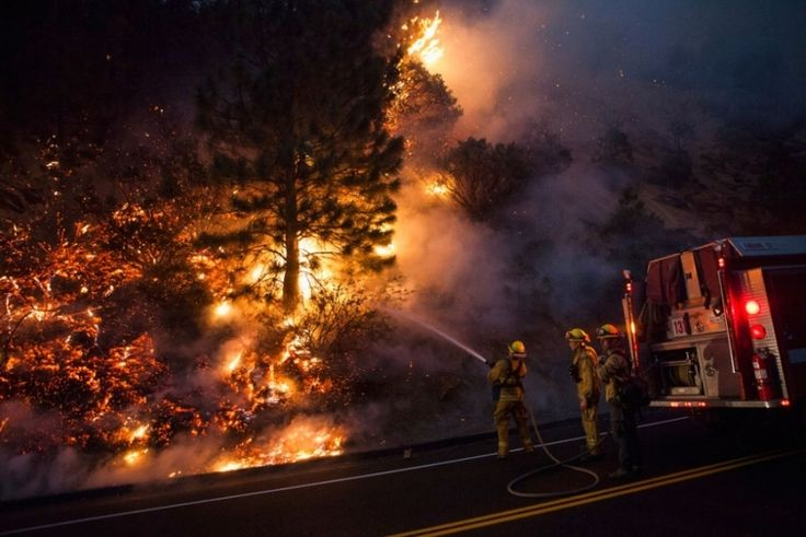 Max Whittaker/Reuters. Firefighters work to prevent the Rim Fire from jumping Highway 120 near Buck Meadows, California.