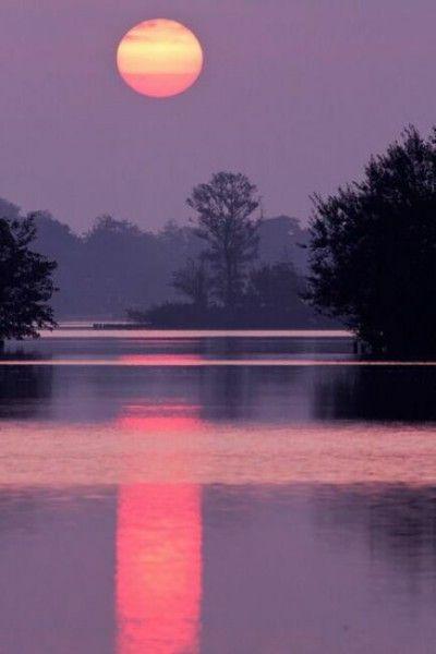 фиолетовая ночь