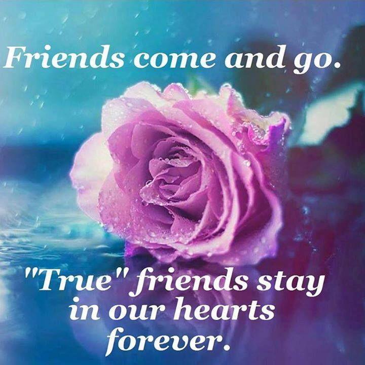 Best 25+ Quotes About True Friends Ideas On Pinterest