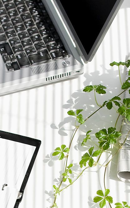 """Office vegetation offers """"micro-restoration""""--the chance for our brains to recharge throughout the day. Many tiny bursts of attention restoration, accumulated during screen breaks or chats with co-workers, could add up to a great deal more focus. Desk plants might even be more refreshing than a window view, all told, because workers own them and likely feel the urge to tend them throughout the day."""