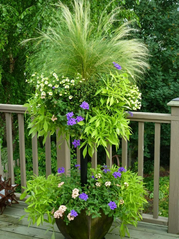 DIY: Side Planting Container Tutorial - learn how to side plant containers like the pros. | Dreaming Gardens