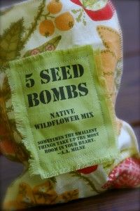 Throw seed bombs into vacant lots and ditches to beautify! Seed bombs: Ideas and How to