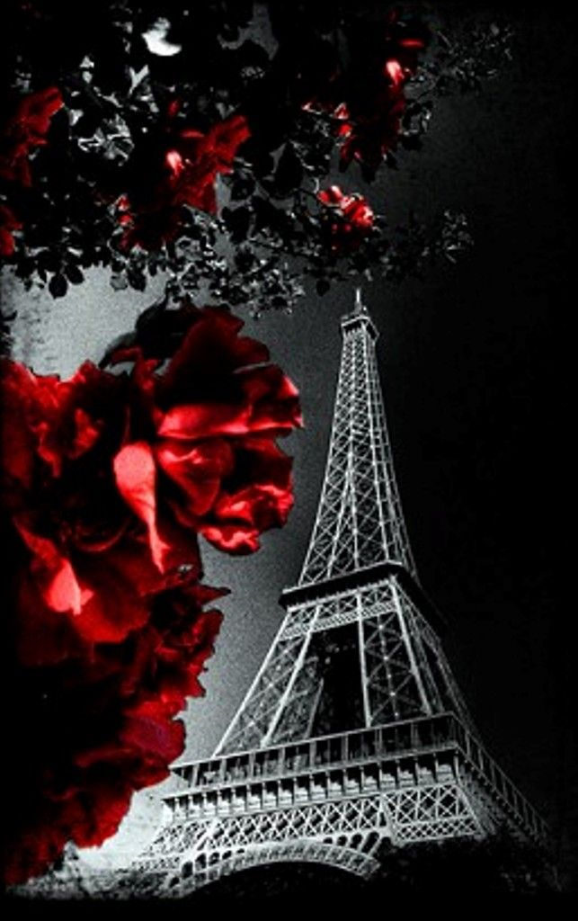 Eiffel Tower   Inna Erten via @innochka2. #Paris #France