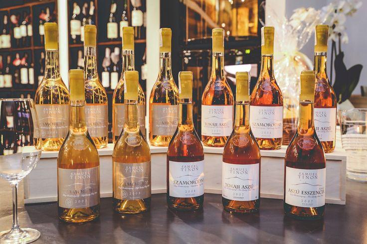 """Nazywany """"latającym winiarzem"""" przez lata pracował jako konsultant do spraw wina we Włoszech, Chile, Teksasie, Australii oraz Węgrzech. Choć jego korzenie wywodzą się z Bordeaux, postanowił osiąść w Tokaju, aby tworzyć węgierskie wina o iście francuskiej elegancji. http://exumag.com/samuel-tinon-francuska-elegancja-w-wegierskim-wydaniu/"""