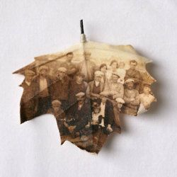 Copy family photos onto paper and craft into leaves. Add them to a tree design...a nice idea for a family reunion or for a scrapbook layout.