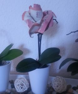Geld verschenken: Origami zum Valentinstag