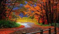 Miniatura de Bellos Paisajes Naturales - Imagen En Hd 3