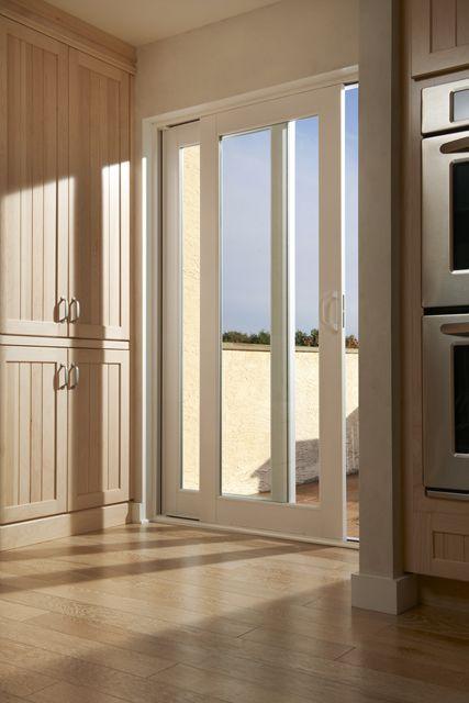 54 best new living room doors images on pinterest for French door back door