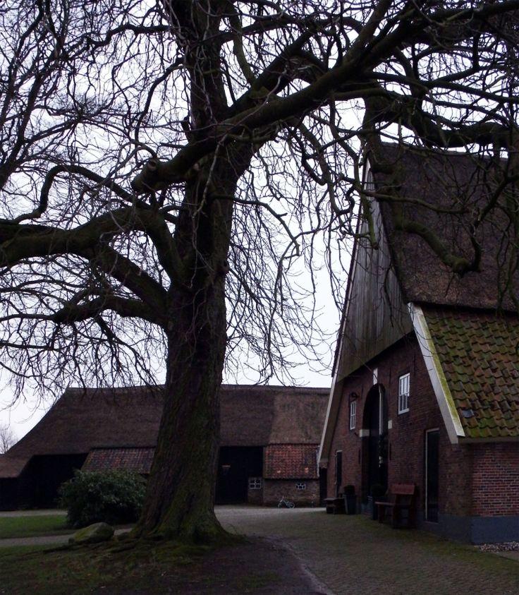 Twentse boerderij  http://lindagrothues1.blogspot.nl/2013/12/een-rode-kerst.html