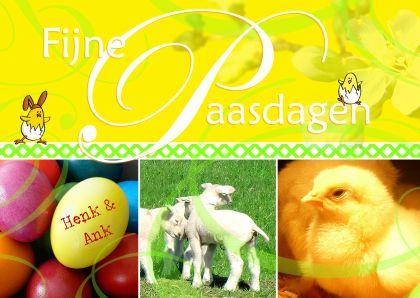 Fijne Paasdagen met lammetjes, kuikentjes en beschilderde eieren met naam - happy easter with little chick, lamb and eggs. Kaartje2go - Creagaat Pasen Pinkster