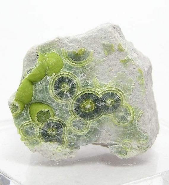 Green Wavellite Radiating Crystals on Chert by FenderMinerals,   on Etsy.  Via Güliz Çağdaş Arslan