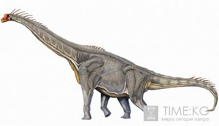 Доисторический мир Кыргызстана: Ферганозавр Верзилина