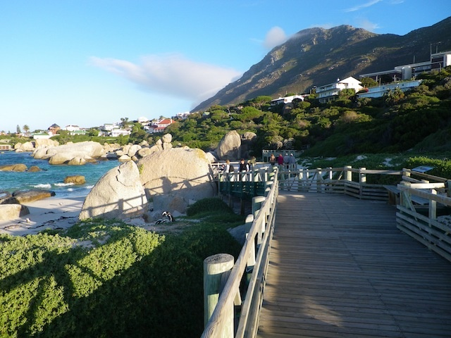 The boarded walk to the penguin colony at Bouldars Beach, Simonstown, South Africa.