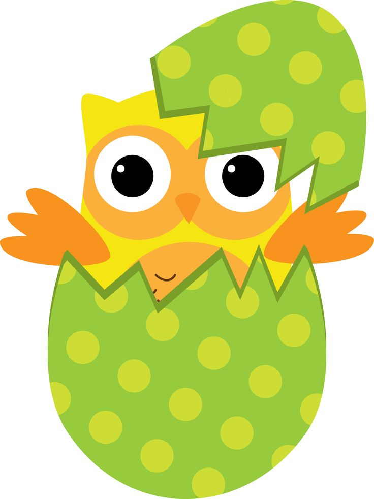 free easter owl clip art - photo #20