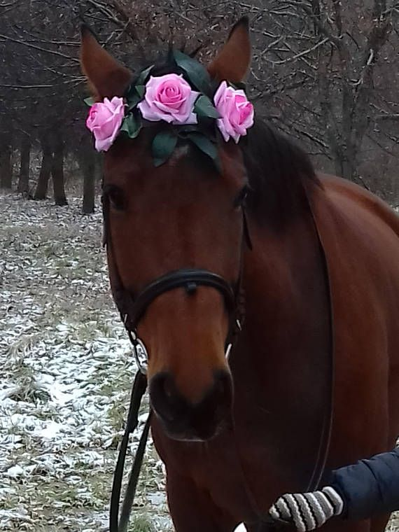 Hey, I found this really awesome Etsy listing at https://www.etsy.com/listing/554609632/flower-browband-pony-horse-riding-equine