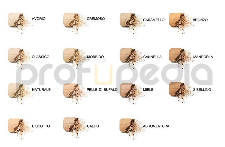 Perfect Finish Powder Foundation Wet or Dry Nuances