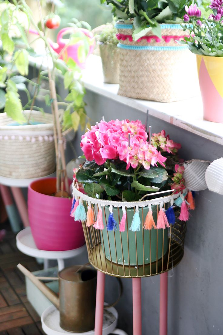 3 DIY ideas for your boho balcony & plant care tips