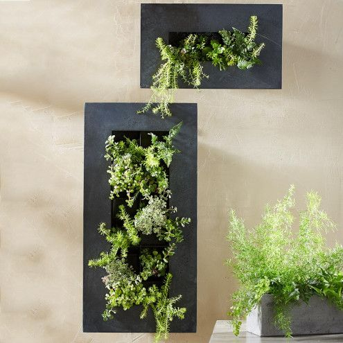 Hanging Metal Wall Planter | VivaTerra