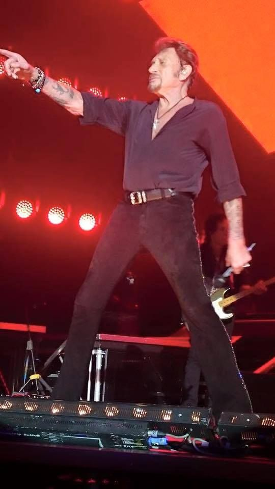 597 Best Images About Wands On Pinterest: 597 Best Johnny Hallyday Images On Pinterest