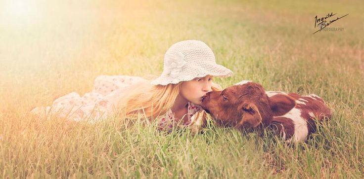 My girl kissing a little 2 days old calf  © Ingvild Bolme Photography
