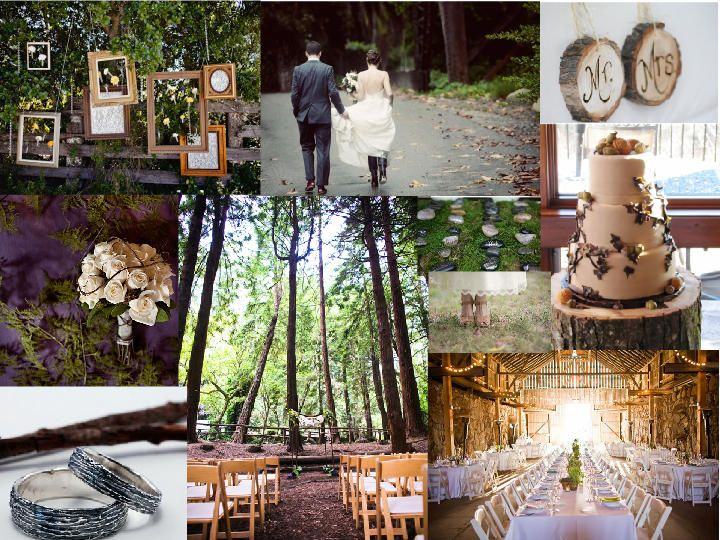 28 best wedding reception images on pinterest marriage reception hanging frames add interest to a rustic wedding great way to display family or engagement pictures junglespirit Image collections