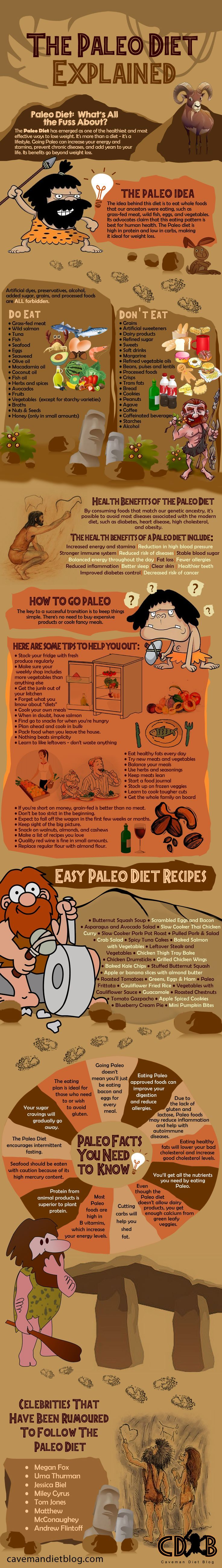 The Paleo Diet Explained - Fantastic infographic full of information about the Paleo diet - perfect for beginners #paleodietforbeginners #paleodiet #paleodietexplained #paleotips