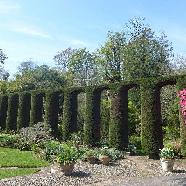 Magnifiques ! J'ai re-découvert avec plaisir les Jardins de #MountStewartHouse&Gardens, situés au coeur de #ArdsPeninsula, au Sud Est de #Belfast. Ils ont Été créés 1921 par Lady Londonderry. #AlainnTours #Ireland #CountyDown