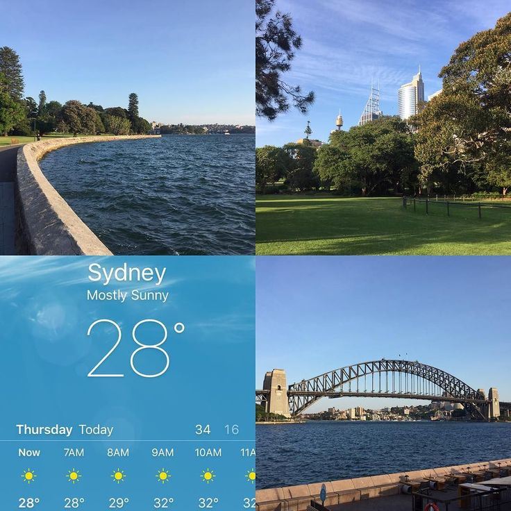 """28 degrees at 6am  With temperatures due to reach 36 by lunchtime I decided to switch my day around - run in the """"cooler"""" morning and F45 at lunchtime. Hot & sweaty but worth it to see a beautiful Sydney morning  #run #running #runner #runnersofinstagram #womensrunningcommunity #f45 #f45training #sydney #harbour #sydneyharbourbridge #royalbotanicgardens #sun by hannahquade http://ift.tt/1NRMbNv"""